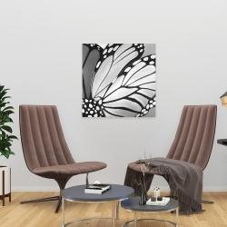 Canvas 24 x 24 - Mornach wings closeup