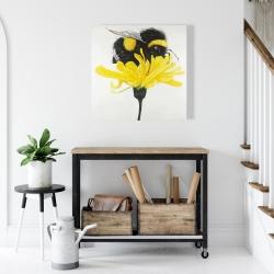 Canvas 24 x 24 - Bumblebee on a dandelion