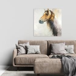Canvas 24 x 24 - Wild horse