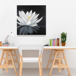 Canvas 24 x 24 - Lotus flower with reflection
