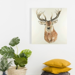 Canvas 24 x 24 - Front deer portrait