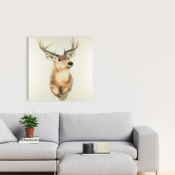Canvas 24 x 24 - Deer portrait