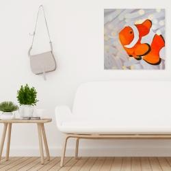 Canvas 24 x 24 - Clownfish