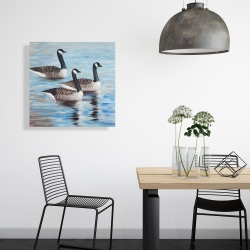 Canvas 24 x 24 - Canada geese in water