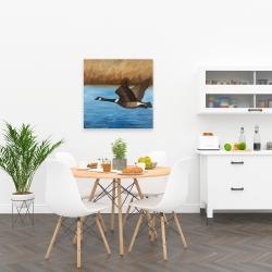 Canvas 24 x 24 - Canada goose