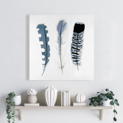 Canvas 24 x 24 - Delicate blue feathers