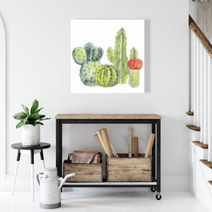 Rassemblement de petits cactus