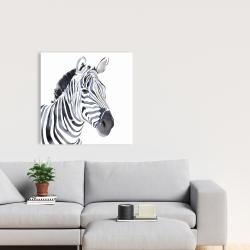 Canvas 24 x 24 - Watercolor zebra