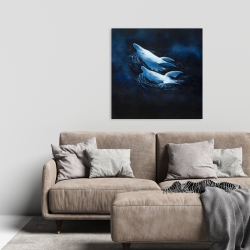 Canvas 24 x 24 - Two swimming dolphins