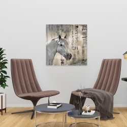 Canvas 24 x 24 - Rustic white horse