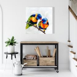 Canvas 24 x 24 - Couple of parrots