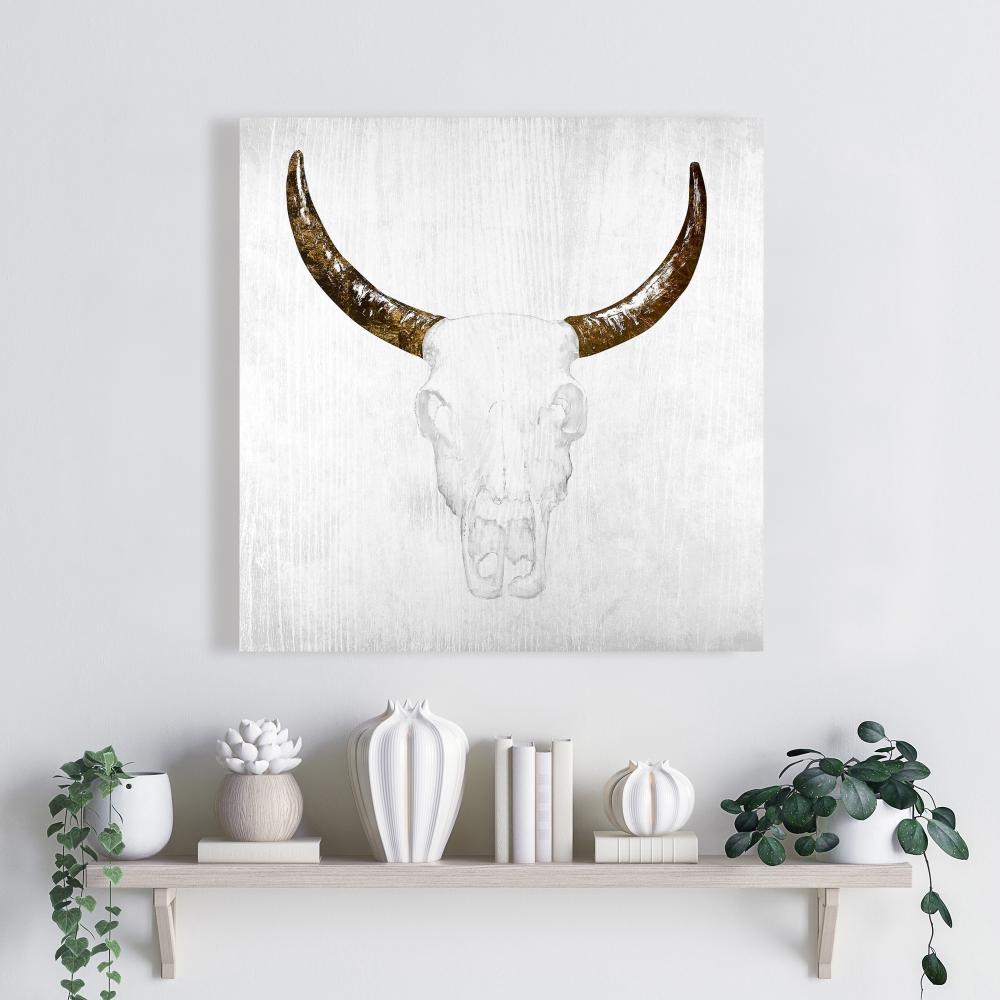Bull skull with brown horns