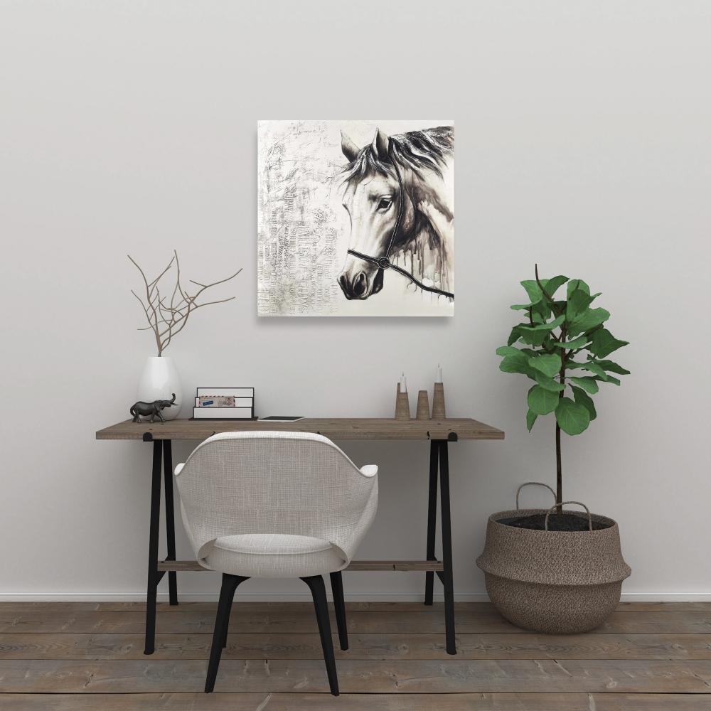 Alpha the white horse