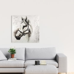 Canvas 24 x 24 - Flicka the white horse