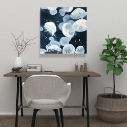 Canvas 24 x 24 - Jellyfishs