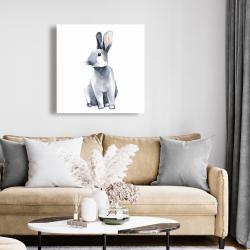 Canvas 24 x 24 - Gray curious rabbit