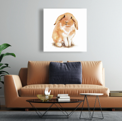 Canvas 24 x 24 - Lop-rabbit
