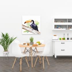 Canvas 24 x 24 - Toucan perched