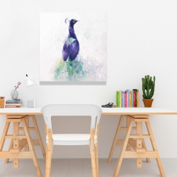 Canvas 24 x 24 - Graceful peacock