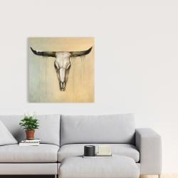 Canvas 24 x 24 - Bull skull