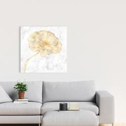 Canvas 24 x 24 - Golden poppy flower