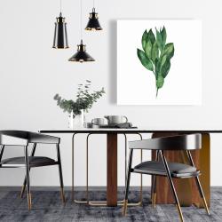 Canvas 24 x 24 - Bay leaves bundle