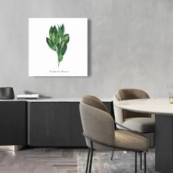 Canvas 24 x 24 -  bay leaves bundle - fr