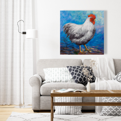 Canvas 24 x 24 - Grey rooster