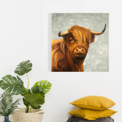 Canvas 24 x 24 - Highland cattle