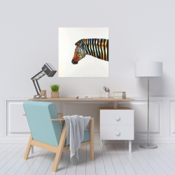 Canvas 24 x 24 - Colorful zebra