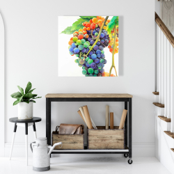 Canvas 24 x 24 - Colorful bunch of grapes
