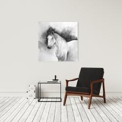 Canvas 24 x 24 - Domino horse