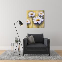 Canvas 24 x 24 - Daisies at sun