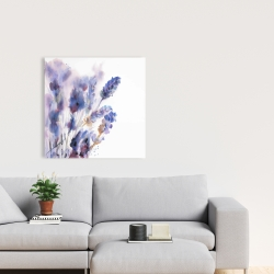 Canvas 24 x 24 - Watercolor lavender flowers with blur effect