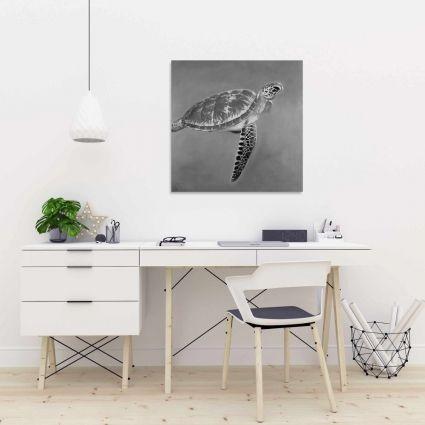 Grayscale aquatic turtle
