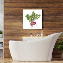 Canvas 24 x 24 - Watercolor radish