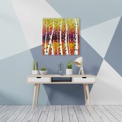 Canvas 24 x 24 - Colored birches