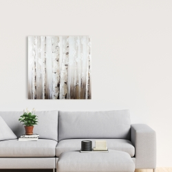 Canvas 24 x 24 - Abstract white birches