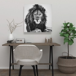 Canvas 24 x 24 - The lion king
