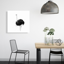 Canvas 24 x 24 - Ostrich in watercolor