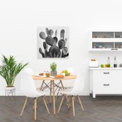Canvas 24 x 24 - Grayscale paddle cactus plant