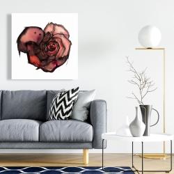 Canvas 24 x 24 - Dark rose