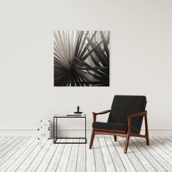 Canvas 24 x 24 - Sepia tropical plants