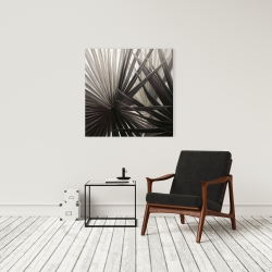 Canvas 24 x 24 - Grayscale tropical plants