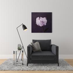 Toile 24 x 24 - Magnifique fleur mauve