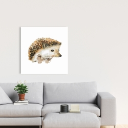 Canvas 24 x 24 - Watercolor hedgehog