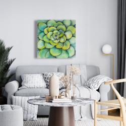 Canvas 24 x 24 - Watercolor succulent plant