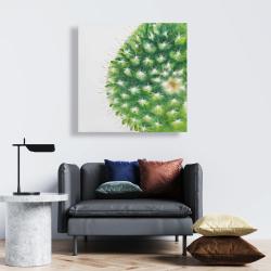Canvas 24 x 24 - Watercolor mini cactus