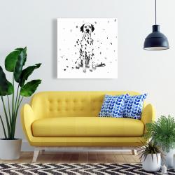 Canvas 24 x 24 - Dalmatian dog