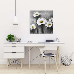 Canvas 24 x 24 - Daisies